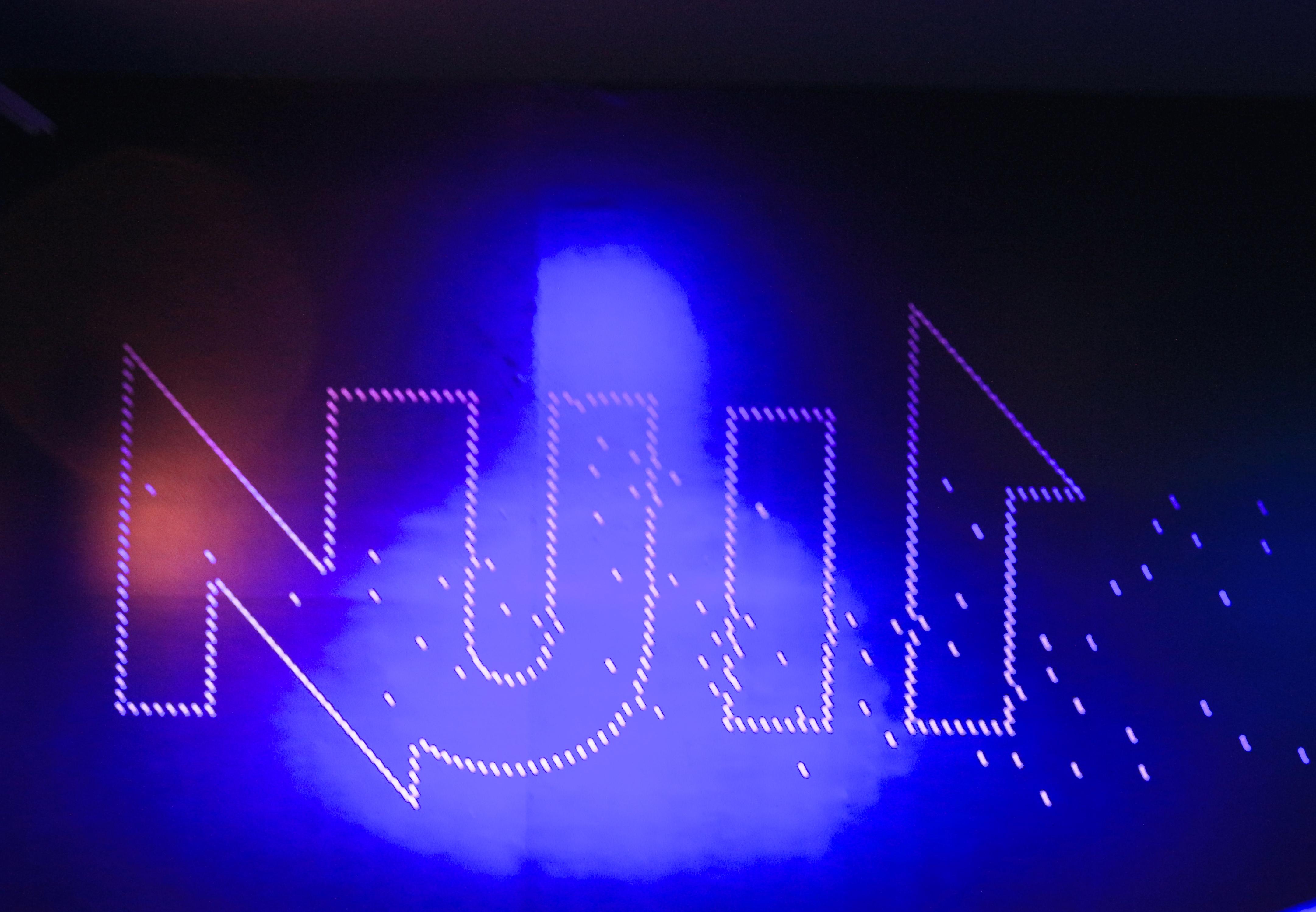 Exposition Nuit au MNHN