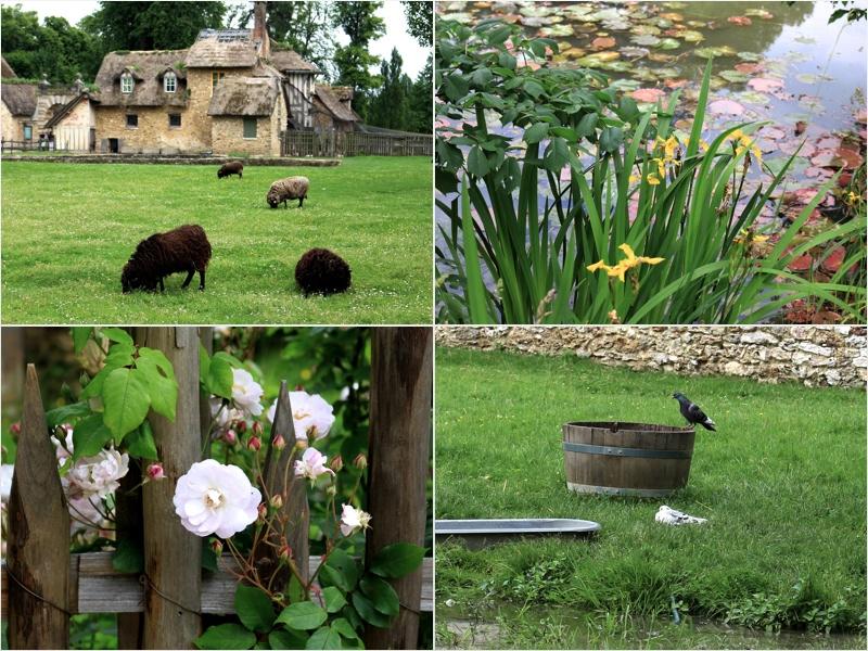 Versailles - Hameau de la Reine - Sweet Cabane