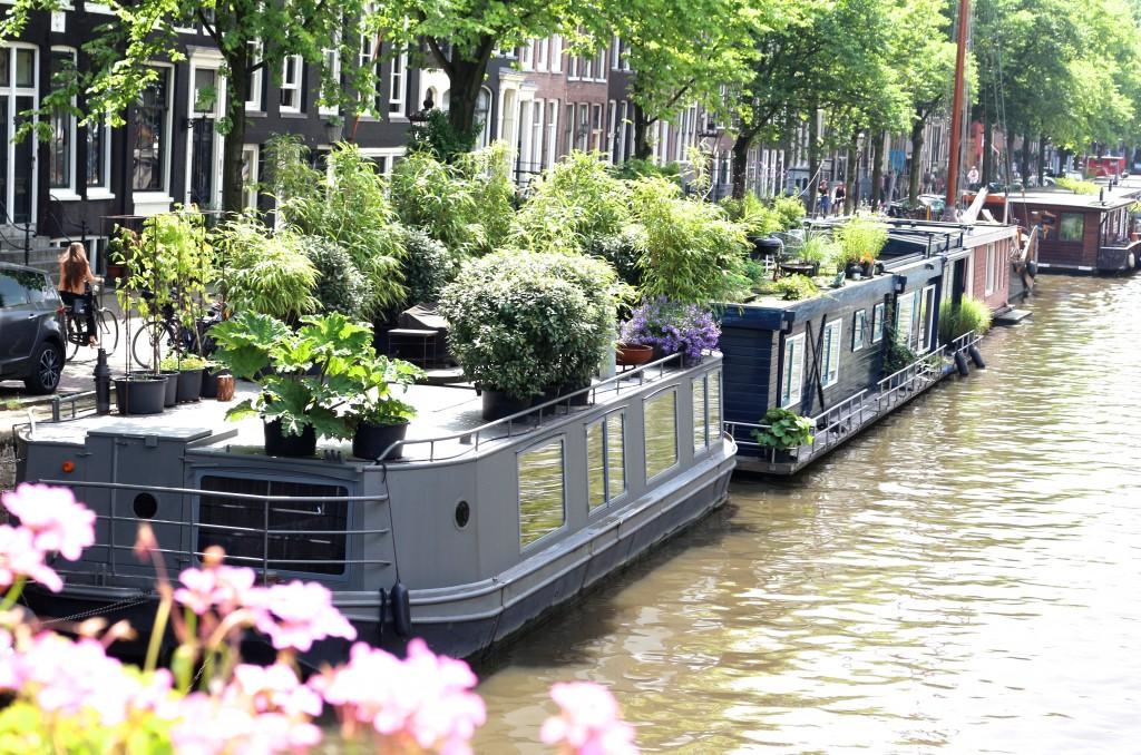 Amsterdam - Sweet Cabane