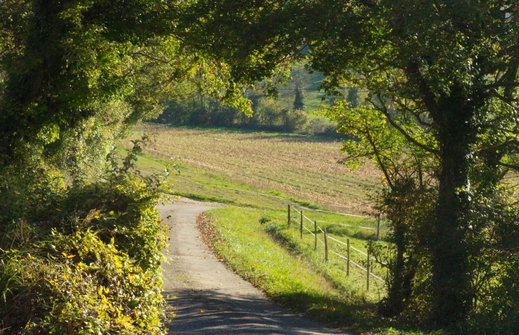 Sweet Cabane- Vacances d'automne