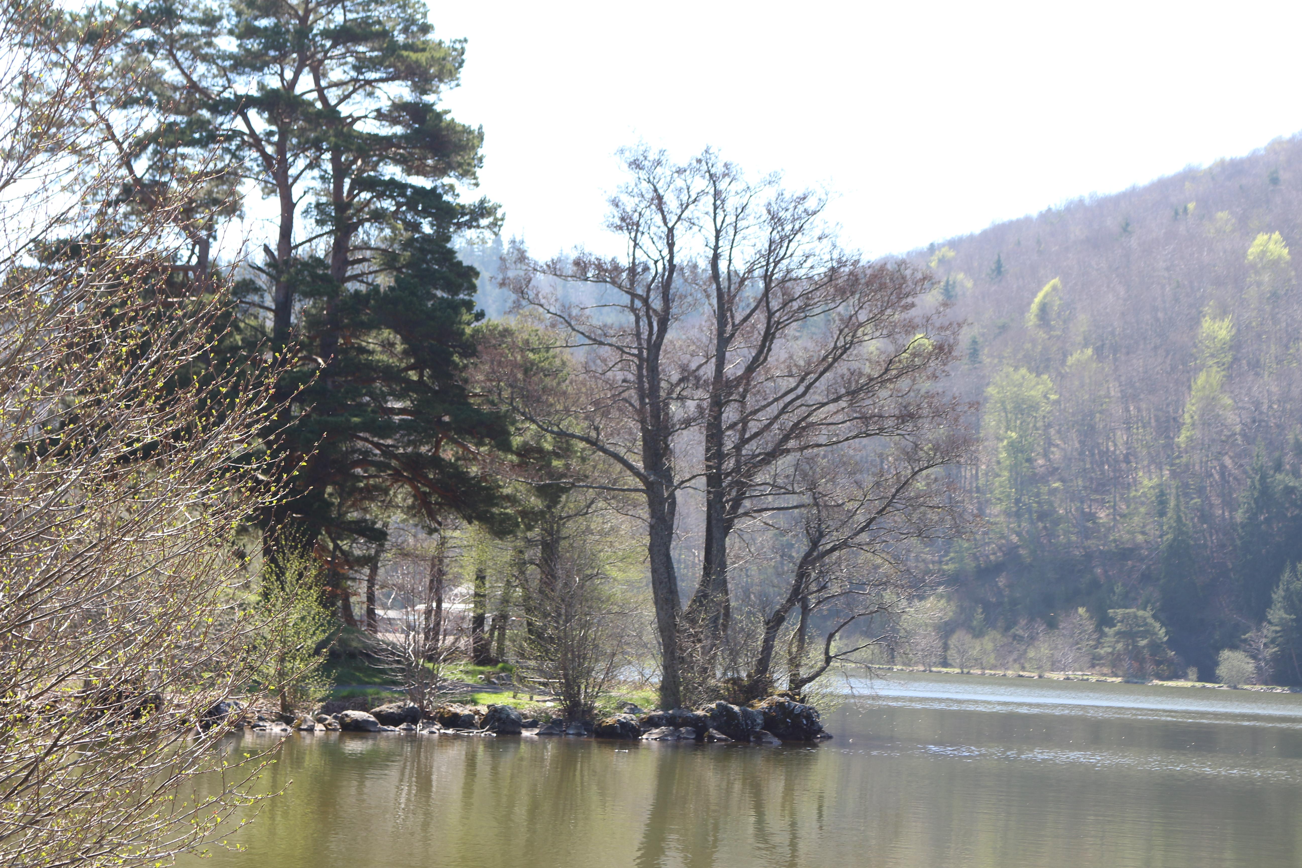 Lac Chambon, Auvergne, Sweet Cabane