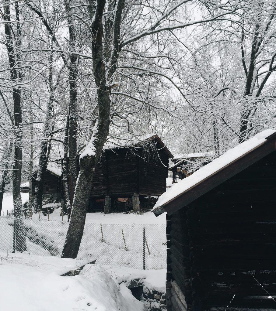 Crédit photo : Birgitte Kiste Johansen