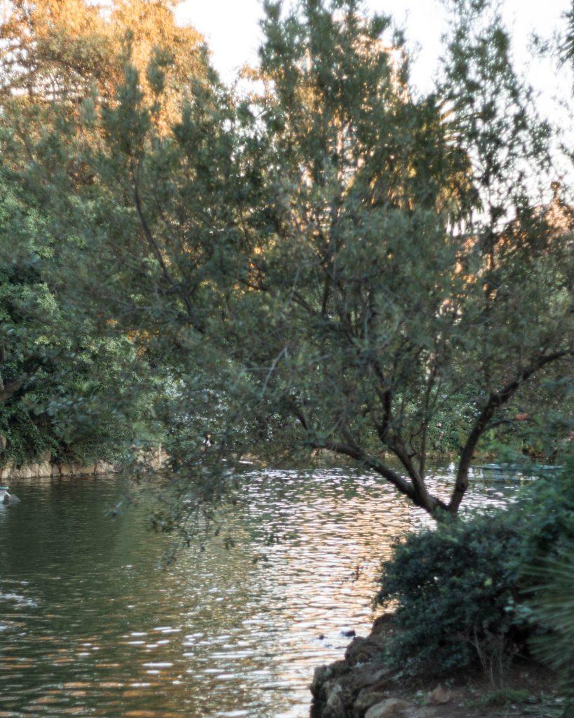 Parque de la Ciutadela